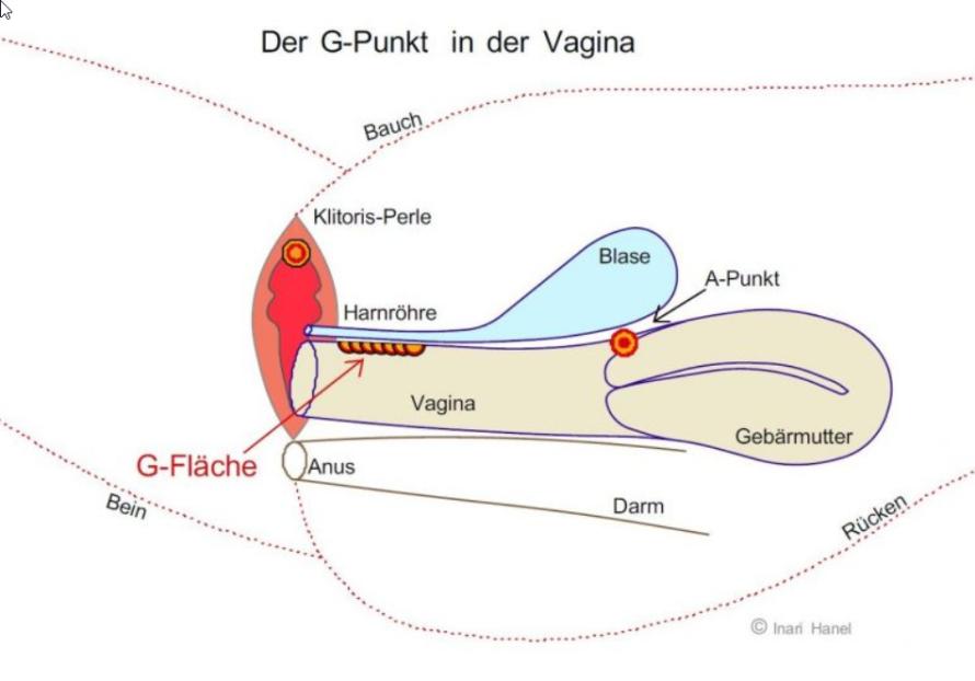 Der G-Punkt - Tantra Massage für die Frau